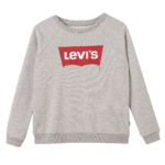 sweater grey mellee v.a. 39,95